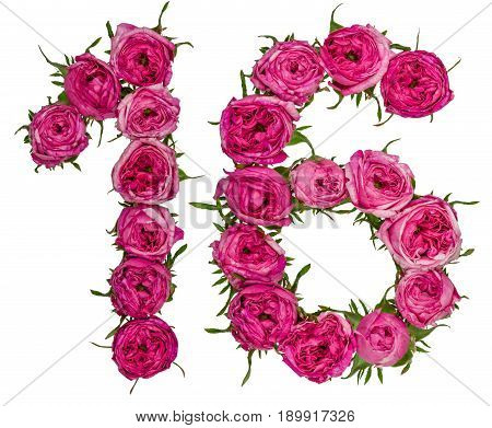 Arabic Numeral 16, Sixteen, From Red Flowers Of Rose, Isolated On White Background