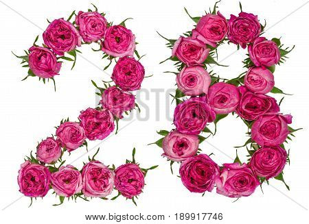 Arabic Numeral 28, Twenty Eight, From Red Flowers Of Rose, Isolated On White Background