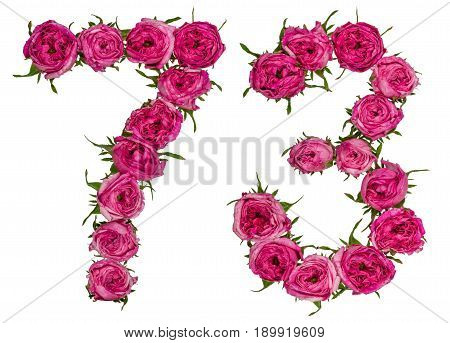 Arabic Numeral 73, Seventy Three, From Red Flowers Of Rose, Isolated On White Background