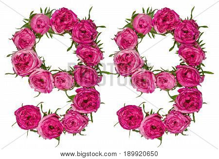 Arabic Numeral 99, Ninety Nine, From Red Flowers Of Rose, Isolated On White Background