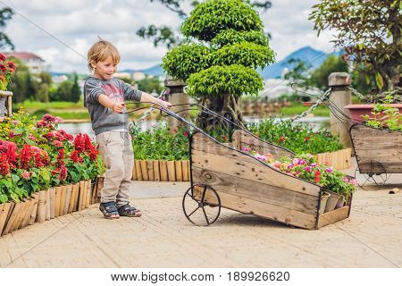 Child Pushing Wheel Trolley In The Garden. Sweet Little Toddler Boy Playing With Wheelbarrow On Back