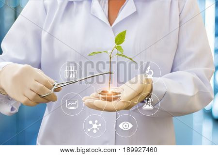 Biotechnology Researcher Concept.