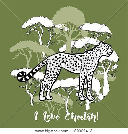 Cheetah and savanna trees print. Hand drawn sketches. Vector Illustration