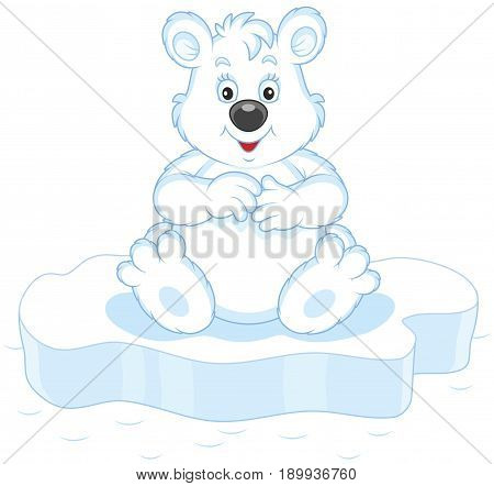 Polar bear sitting on an ice floe