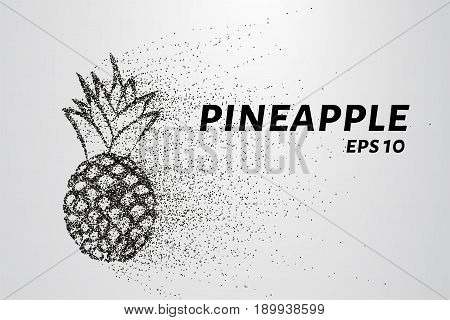 Pineapple Of Particles. Pineapple Consists Of Small Circles And Dots. Vector Illustration
