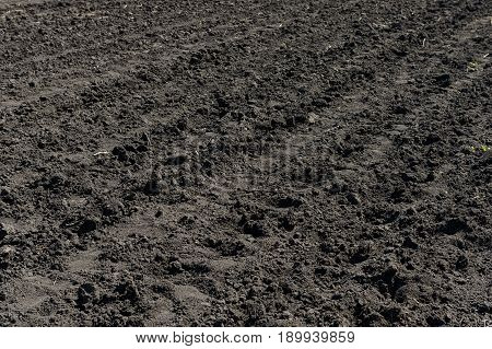 Plowed not sown field with chernozem on sunny day