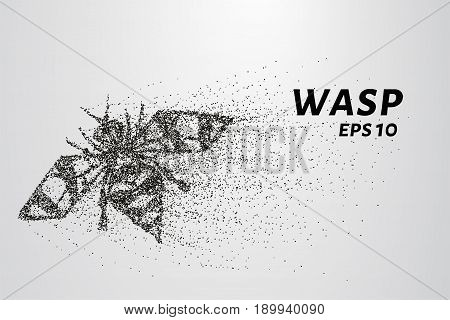 Wasp Of The Particles. Wasp Consists Of Circles And Points. Vector Illustration.