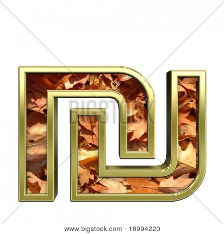 Sheqel sign from autumn gold alphabet set, isolated on white. Computer generated 3D photo rendering.