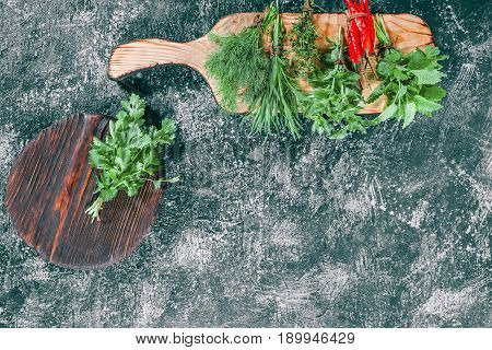 Fresh cilantro on the cutting board. Fresh lemon balm, dill, oregano, thyme, tarragon and chili peppers ready for cooking. Dark grey spotty background. Top view