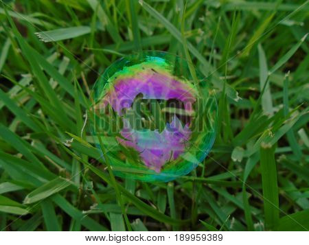 A colorful bubble that landed on grass.