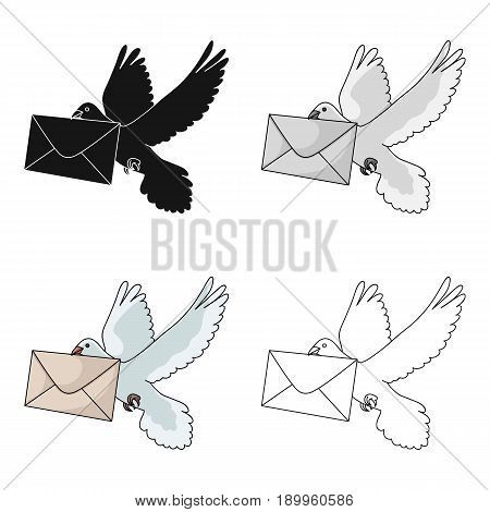 Post pigeon.Mail and postman single icon in cartoon style vector symbol stock illustration .