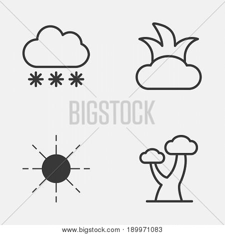 World Icons Set. Collection Of Bush, Snowstorm, Sun And Other Elements. Also Includes Symbols Such As Cloud, Bush, Shrub.
