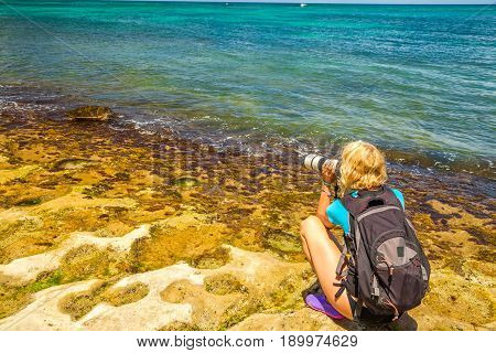 Travel photographer takes shot of green sea turtles in Laniakea Beach also known as Turtle Beach. Nature woman photographer taking pictures outdoors. Oahu island, North Shore in Hawaii, USA.