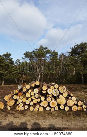 Forestry - Pile Of Tree Boles