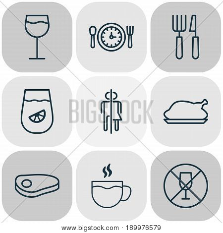 Eating Icons Set. Collection Of Fork Knife, Steak, Lemonade And Other Elements. Also Includes Symbols Such As Glassware, Knife, Meat.