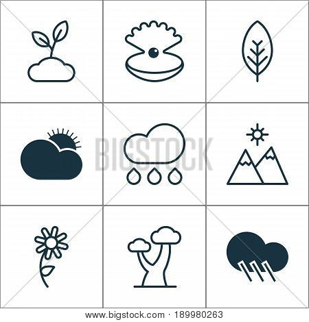 Harmony Icons Set. Collection Of Raindrop, Sunny Weather, Seashell And Other Elements. Also Includes Symbols Such As Foliage, Seashell, Weather.