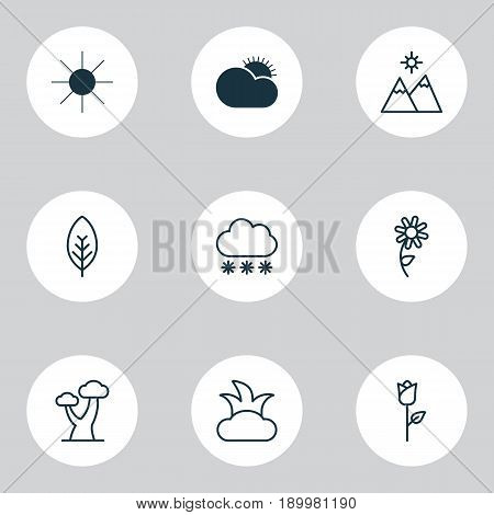 Harmony Icons Set. Collection Of Oak, Sunflower, Snowstorm And Other Elements. Also Includes Symbols Such As Weather, Foliage, Sunflower.