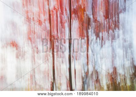 Abstract landscape of red autumn trees on lake shore in fall. Image produced by camera motion.