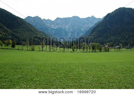 Meadow under high mountains