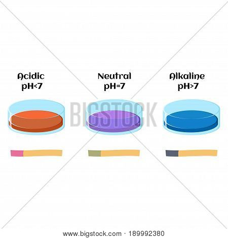 Litmus liquid and litmus paper test in solutions with acidic, alkaline and neutral pH. Indicator color changes. Educational chemistry for kids. Cartoon vector illustration in flat style.