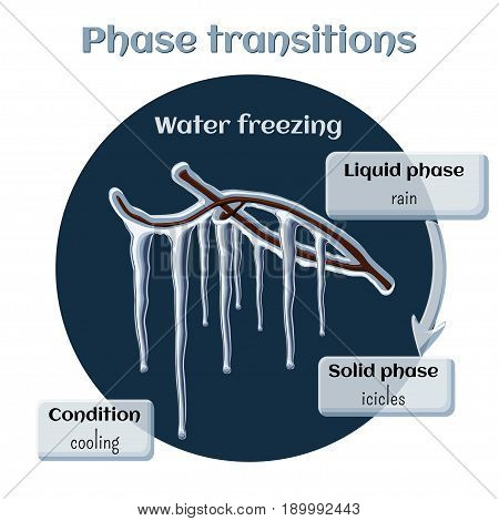 Changes of states. Part 5 of 6. Water freezing - icicles on tree branches. Phase transition from liquid to solid state. Educational infographics. Cartoon vector illustration in flat style.