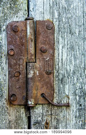 old tree wood rusted hinge vintage background