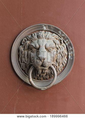 Lion head door knocker on wooden door