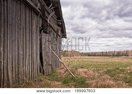 An old hay pole supports the door of an old barn house in the rural Finland. It's June but it's still very cold and nothing much is growing on the fields.