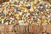 Close view of wild bird food seeds in a hand made wood basket. poster