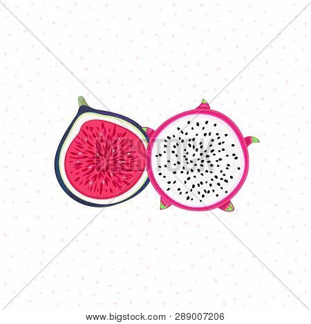 Vector Isolated Tropical Fruits. Pitahaya Or Pitaya, Fig. Creative Artistic Style. It Can Be Use For