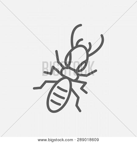 Termite Icon Line Symbol. Isolated Vector Illustration Of  Icon Sign Concept For Your Web Site Mobil