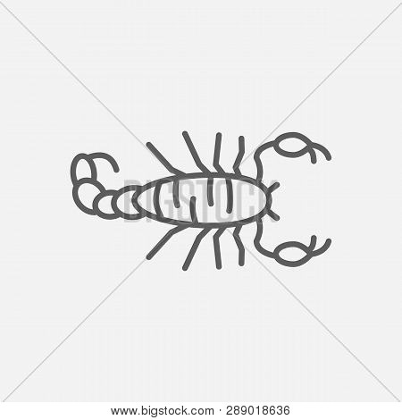 Fat Tailed Scorpion Icon Line Symbol. Isolated Vector Illustration Of  Icon Sign Concept For Your We