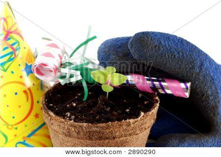 Celebrate Spring