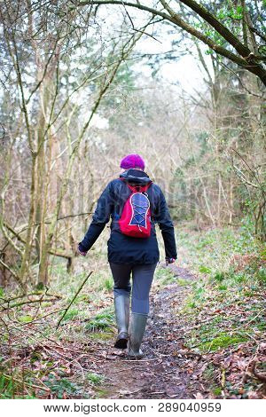 A Hiker Walks Along A Forested Trail In Rural Shropshire, England.