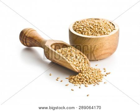 Roasted sesame seeds in scoop isolated on white background.