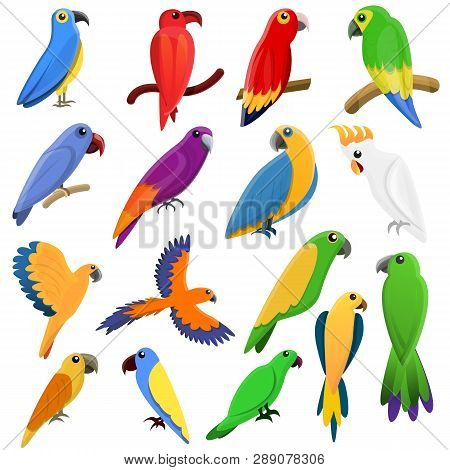 Parrot Icons Set. Cartoon Set Of Parrot Icons For Web Design