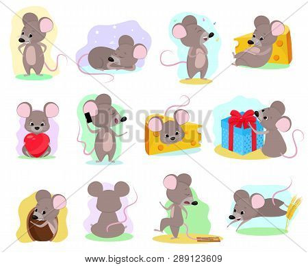 Cartoon Mouse Vector Mousy Animal Character Rodent And Funny Rat With Cheese Illustration Mousey Set