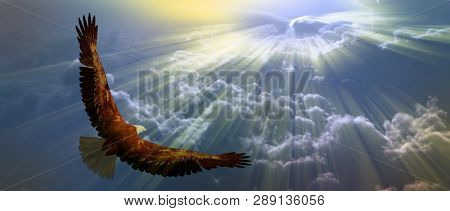 Eagle in flight above the clouds. 3D rendering