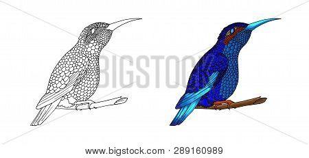 Small Hummingbird. Exotic Tropical Colibri Animal Icon. Golden Emerald Feathers