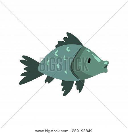 Prehistoric Fish, Biology Evolution Stage, Evolutionary Process Vector Illustration