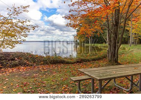 Michigan National Forest In Autumn. Sunny Fall  Day On The Shores Of Brevort Lake In The   Hiawatha
