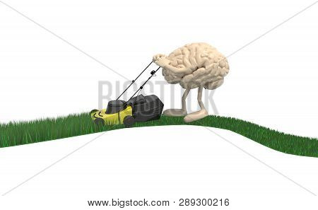 Brain Cartoon With Lawnmower Cutting Grass, Isolated On White Background, 3d Illustration