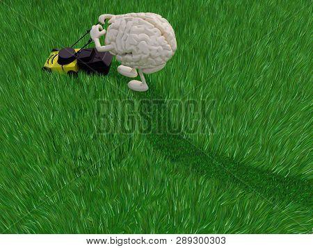 Brainy Cartoon Cutting Grass Field With Lawn Mower, 3d Illustration