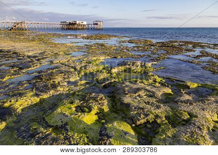 Morning On The Ocean Coast At Low Tide. Coastal Stones, Wooden Pedestrian Bridge Leading Into The Wa