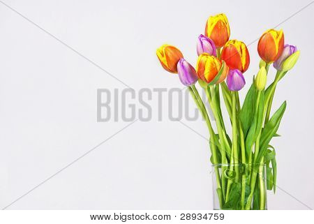 a Bouquet of orange and purple tulips with copy space for text poster
