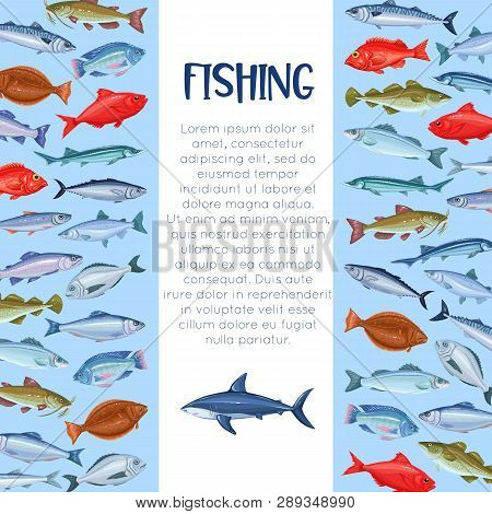 Sea Fishing Template. Fish Page Design. Seafood Layout , Cartoon Salmon, Anchovy, Codfish, Sea Bass,