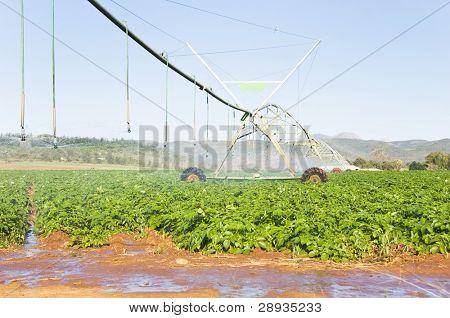 Modern irrigation pivot system