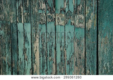 Green Gray Wooden Texture From Old Frayed Fence Boards