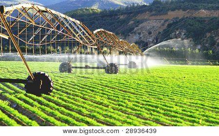Modern irrigation system watering a farm field