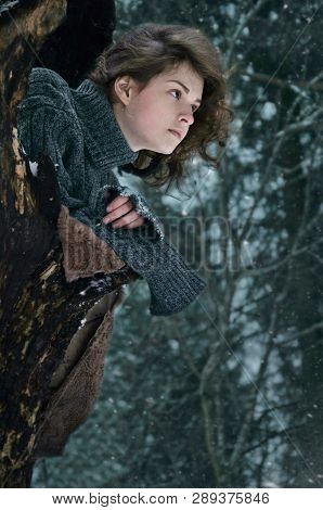 Girl Sits In The Hollow Of The Old Tree
